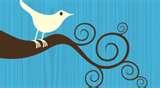 twitter_tree